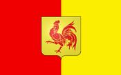 Flag of wallonia NR
