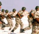 Eastern Sahara Armed Forces