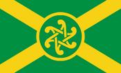 Celtic flag NR