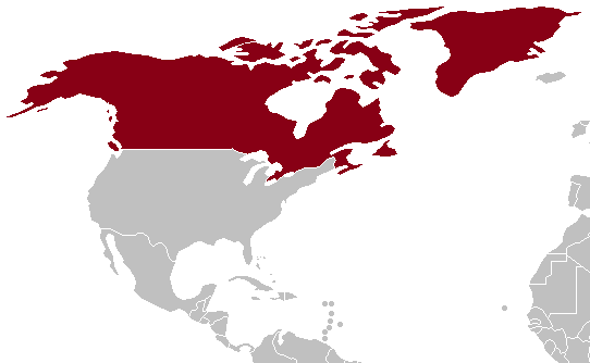 Image Location Of Fascist Canadapng Constructed Worlds Wiki - Canada location