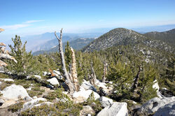 Mount San Jacinto view