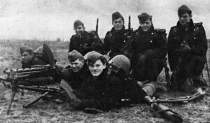 Nordish volunteer defence forces in 1940