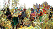 The Farmers of Turkey