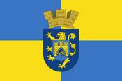 Lviv flag NR