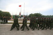 Indochinese National Army 03