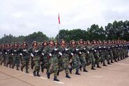 Indochinese National Army 01