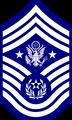 CMSGTAF Insignia (STAF).png