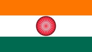 GIR flag