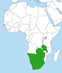 Location of the Federation of South Africa (SWM)