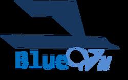 Blue Vu Logo