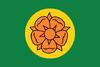 Presidenciaflag.png