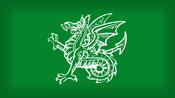 Mercia flag NR