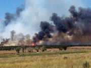 Wildfire in Mexico