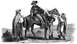 Vaquero 2