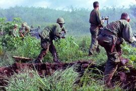 Brazorian troops in Vietnam