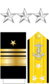 Vadm Insignia (STN).png