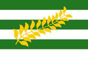 Wreseon flag NR