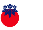 New Changhuan Flag
