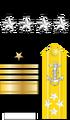 Fadm Insignia (STN).png