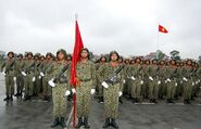 Indochinese National Army 02