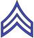 APS Officer Deputy Insignia