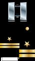 Flt Insignia (STN).png