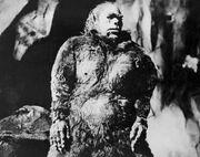 Ужасный снежный человек (1957)