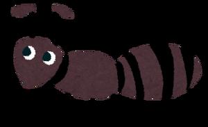 Mushi ari