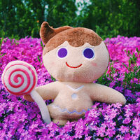 Summer with Bright Cookie
