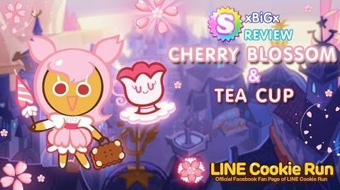 Review Cookie Run SS5 CherryBlossom TeaCup ซากุระ ถ้วยชาดำ New Season