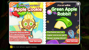 Apple Cookie Apple Rabbit Newsletter