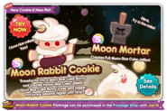 Moon Rabbit Cookie Newsletter