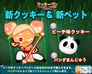 Peach Dumpling line newsletter