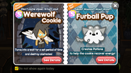 Werewolf Cookie Furball Pup Newsletter
