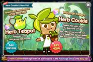 4282016-Herb-Cookie