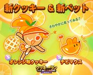 Orange mouse line newsletter