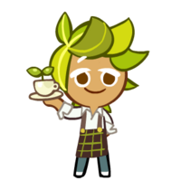 Herb Tea Barista