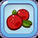 Nutritious Cranberry