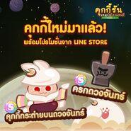 Moon Rabbit Mortar thai line newsletter