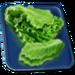 Food-Court-Lettuce-Leaves-3
