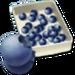 Bakery-Blueberries