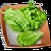 Food-Court-Lettuce-Leaves-2
