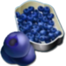 Bakery-Blueberries-3