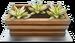 Salad-Bar-Mini-Garden