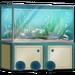 Seafood-Bistro-Aquarium