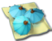 Paradise-Cocktail-Bar-Decorative-Umbrellas