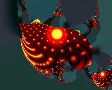 Sea Slug2