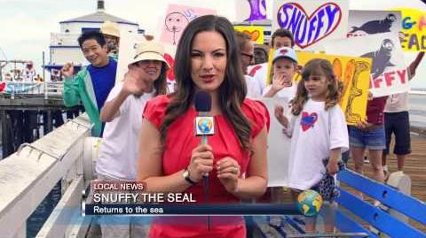"""Snuffy the Seal"" Shark Week Ad 2013"