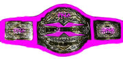TNA Knockouts X Division Championship