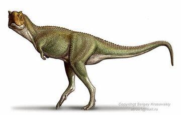 XenotarsosaurusSK